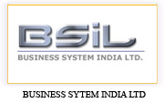 business system india limited
